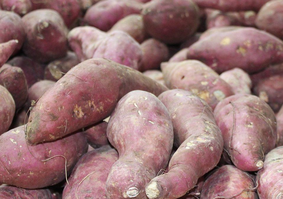 Asiatisk inspireret gulerodssuppe med søde kartofler